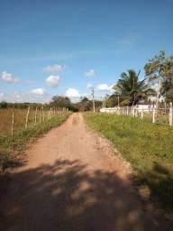 Sítio/fazenda