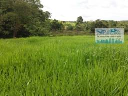 Fazenda 363 hectares em Várzea Grande sentido Cáceres