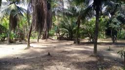 Vendo Sitio no bairro do Rio Novo