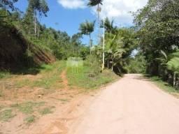 Sitio com pastagem e eucalipto em Canelinha-SC