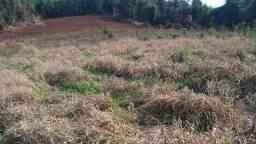 Vendo 8 hectares  em Maravilha SC. R$240.000