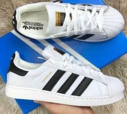 Tênis Adidas SuperStar Branco ( 34 ao 43 )