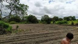 Pra vender logo Terreno entre a Fazenda Real e Lagoa do Mato