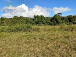 Terreno à venda, 38.905 m² por R$ 500.000 - Santa cruz Cabrália - Santa Cruz Cabrália/BA