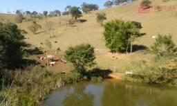 Sítio de 10 alqueires, a 1 Km da Fernão Dias, Camanducaia-MG