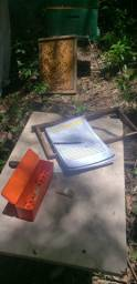Procuro area de mata para colocar colmeias de Abelhas