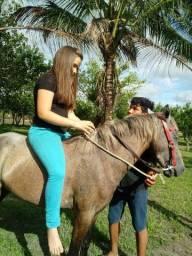 Vende-se uma égua Ametista muito charmosa