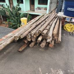 Escoras de eucaliptus