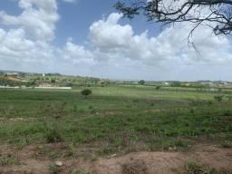 Título do anúncio: Lote Condomínio Green Valley Vitória de Santo Antão