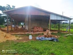 Título do anúncio: Fazenda com 240 hectares sentido Acre 22 km