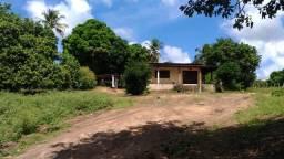 Propriedade na Zona Rural de Coruripe/AL