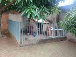 Grade para canil com portão