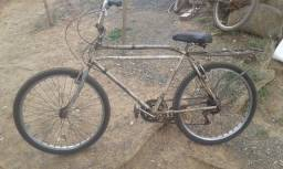 Bicicleta Goricke dois canos