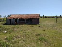 Velleda oferece sitio 2 hectares com casa, açude e galpão, 650 mts asfalto