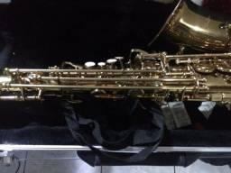 Saxofone Alto Shelter novo