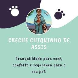 Hospedagem para pets - Creche Chiquinho de Assis