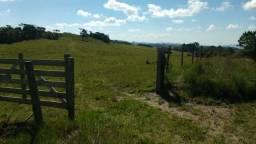 MH20- Linda Área de Terra em Rancho Queimado/SC