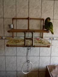 Puleiros para papagaios