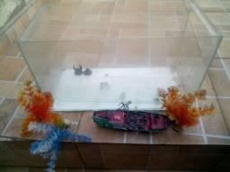Aquario de vidro