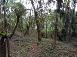 Chacara-para-Venda-em-Braco-da-Figueira-Antonina-PR