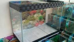 Vendo aquário 80 reais
