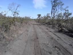 Fazenda Progresso da Palmeira, localizada na Cidade de Palmeira, Estado do Piauí.
