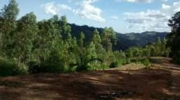 Linda Chácara de 4650 m² com energia, água e vista panorâmica