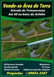 Uma excelente área de terra 90 hectares