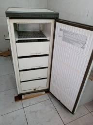 Freezer vertical - Prosdócimo F17