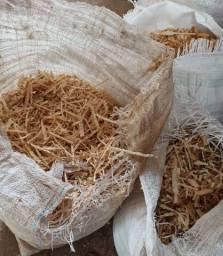Serragem de madeira - Saco grande
