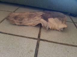 Esconderijo para hamster