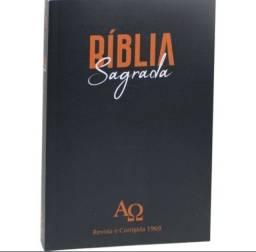 Bíblia Alfa e Ômega