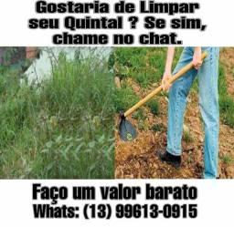 Limpo seu quintal
