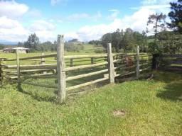 Terreno Agricola - pastagem água reflorestamento plantio