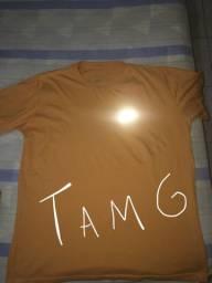 Camisas de marca 20$ (qualquer uma)