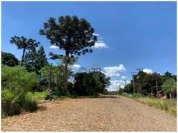 Terreno à venda, 8.100 m² por R$ 322.000 - Vila Bela - Guarapuava/PR