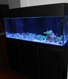 Aquário Marinho - 450 Litros