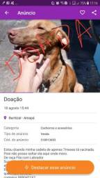Doada