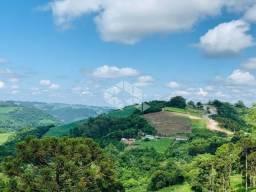 Terreno à venda em Faria lemos, Bento gonçalves cod:9903238