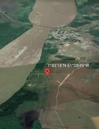 Chácara 9 hectares