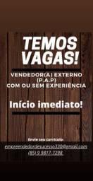 Vendedor (a) externo (P.A.P)