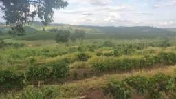 Fazenda à venda, 444000 m² por R$ 2.000.000,00 - Zona Rural - Botelhos/MG