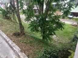 Terreno para Venda - Condomínio Villas 88 em Angra dos Reis
