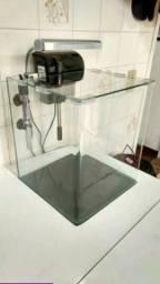 Aquario lindo vidro curvo