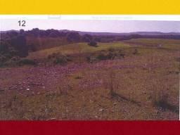 Alegrete (rs): Parte Da Fração De Campo; 25ha qpkpt puypy