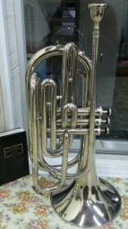 Trombonito Weril