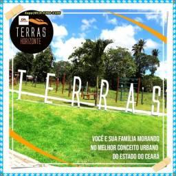 Terras Horizonte><