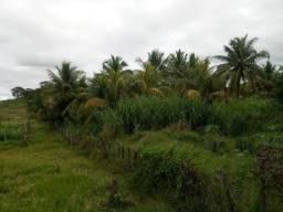 Sitio de 6ha em Tabira-PE
