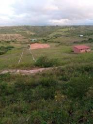 Terreno em Arara 5×20 metros Próximo a Pista Principal