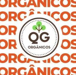 Vendo empresa de entrega de orgânicos